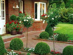 Beautiful front garden with topiary