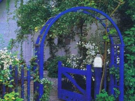 Front garden with blue arch