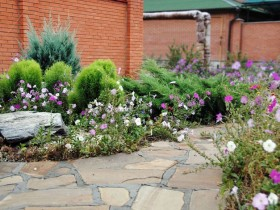 Mixborders as front garden