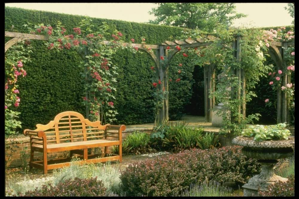 Аллея в саду фото
