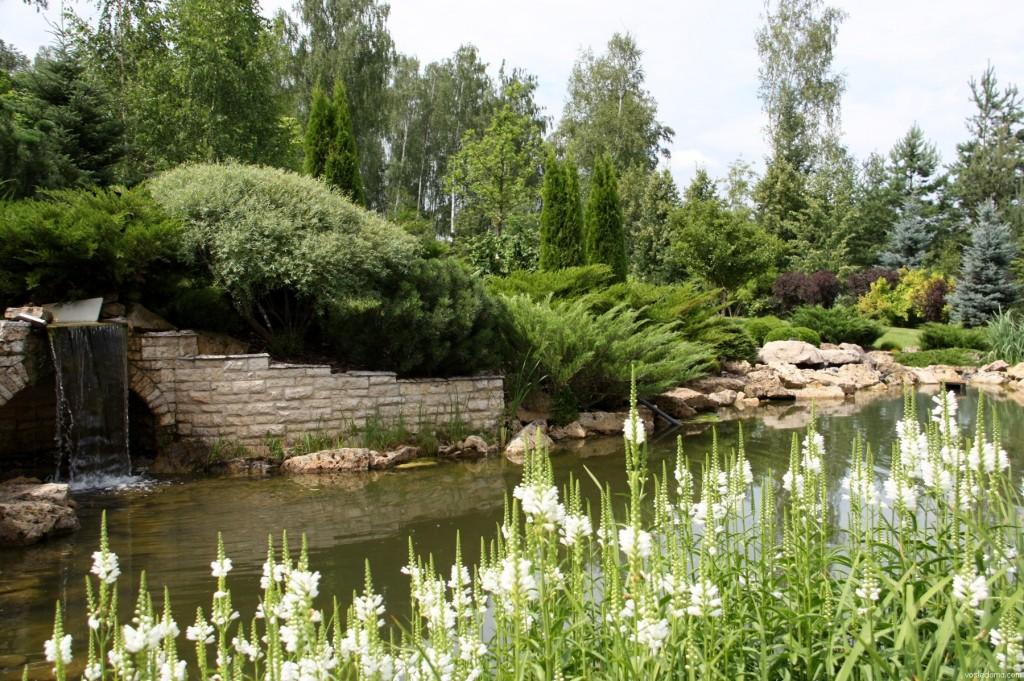 Пример искусственного водоема для английского сада