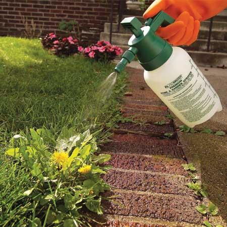 Удаление сорняков гербицидом