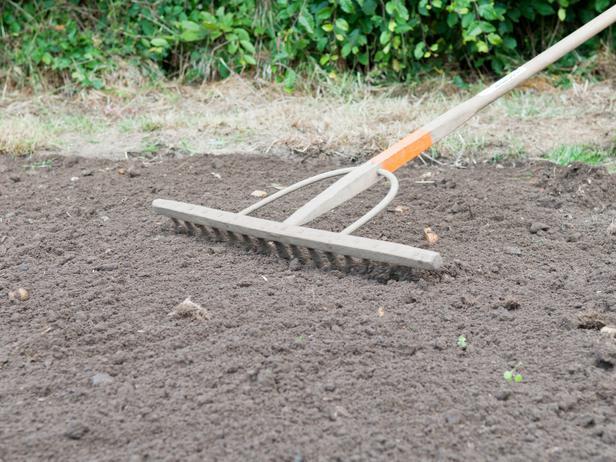 Выравнивание подготовленной для газона почвы