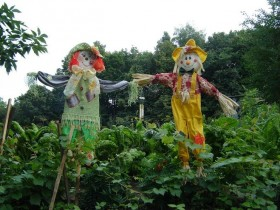 Pair of garden scarecrows in the country