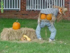 Scarecrow dropped down pants