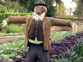 Stylish design scarecrows