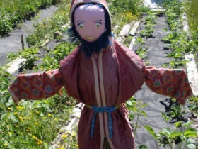 Vegetable doll with your own hands