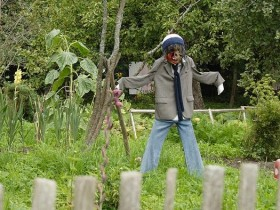 Kulgili Scarecrow