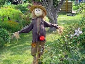 Scarecrow in suburban area