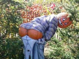 Humorous design scarecrows
