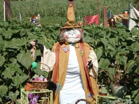 Beautiful design garden scarecrows