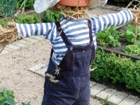 Garden Scarecrow from straw