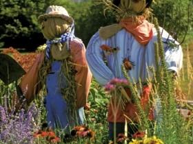 Bu scarecrows original dizayn