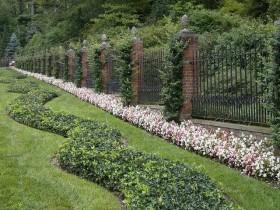 Ridges along the fence