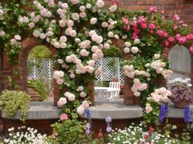 Rose house design
