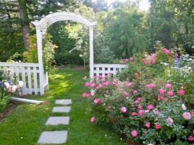 Rose garden in garden design