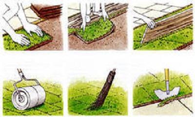 Процесс укладки рулонного газона своими руками