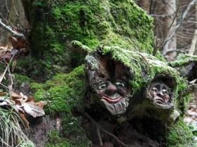 Креативне оформлення коріння дерева