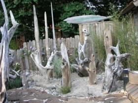 Коріння в декорі саду