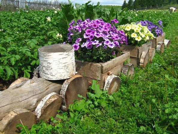 Садовый декор из дерева своими руками фото 917