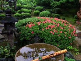 A fountain in Japanese style