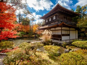 Luxury Japanese garden