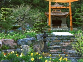 Gazebo in the Japanese style
