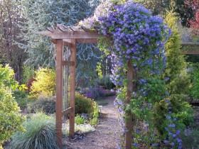 Arch in garden landscape style