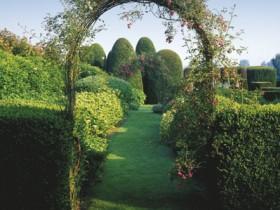 Arch in a regular garden