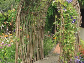 Homemade arch in a garden of vines