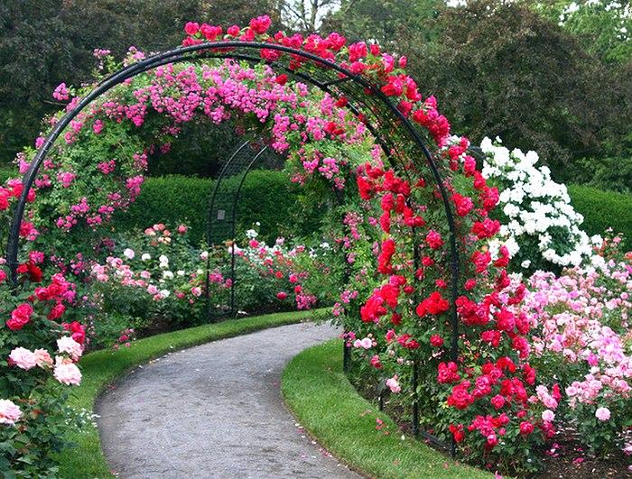 Сделать арку для роз