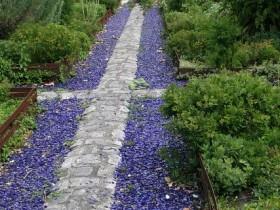 Садова доріжка, прикрашена декоративним гравієм