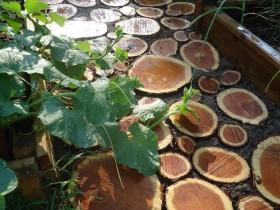 Садова доріжка з дерева