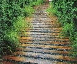 Садовая дорожка из кедра