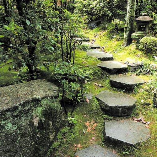 Оригинальная садовая лестница