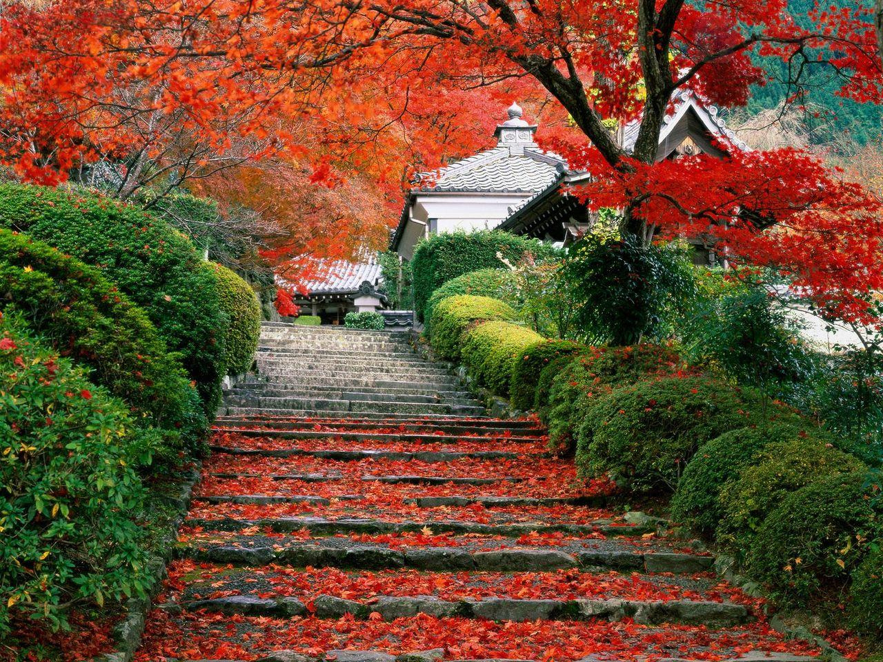 Садовая лестница для романтического сада