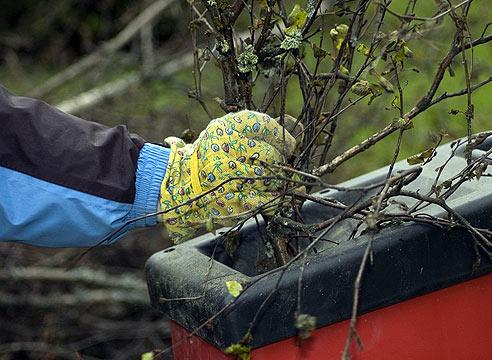 Безопасность при работе с измельчителем: работа в резиновых перчатках