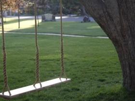 Ikki bog ' swing
