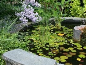 Garden bench stone
