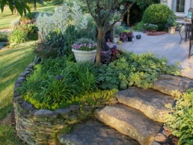 A stone staircase in the garden