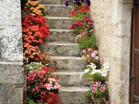 Garden stairs made from concrete