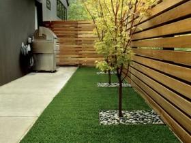 Fence minimalist garden