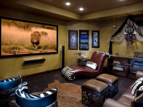 Home theater in the style of Safari