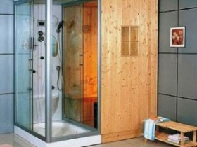Sauna with shower cubicle