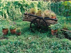 Idea for a country garden