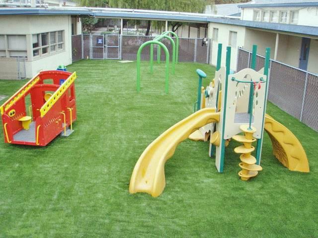 Газонные травы для детской площадки