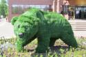 Садовые скульптуры из растений: достойная замена топиару