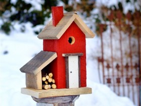 Design red wooden birdhouse