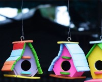 Birdhouses of different shades