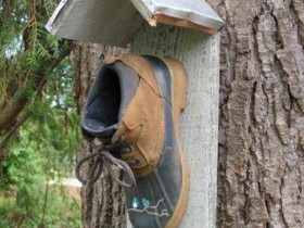 Birdhouse out of an old Shoe